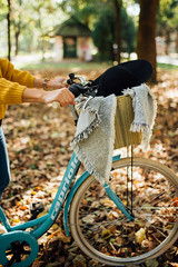 Woman pushing a bicycle in a park covered with fallen leaves.
