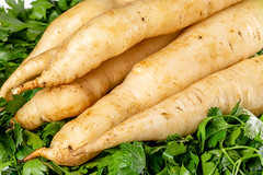 White carrot root vegetables, close up