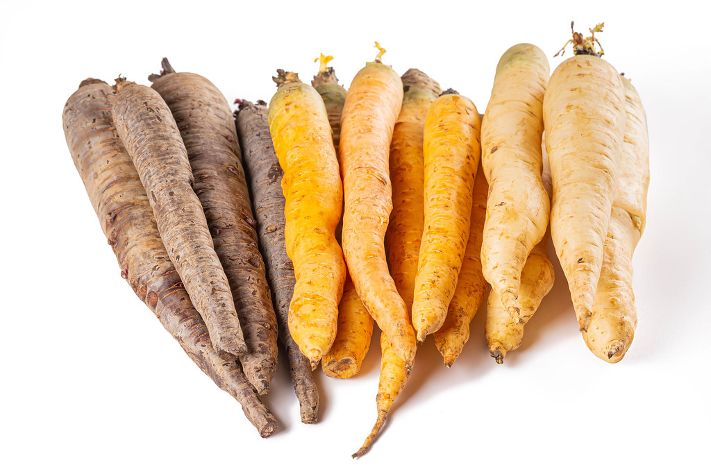 Set of multi-colored ripe carrots