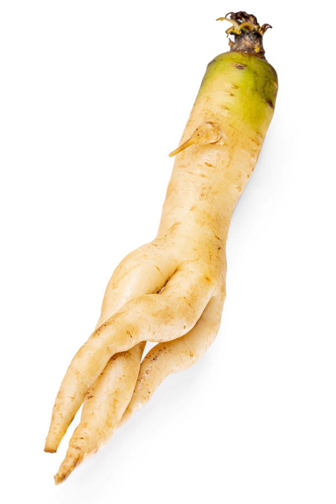 Fresh ripe arracacha white carrot