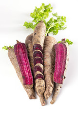Purple carrots, whole and sliced on white plate with green leaves
