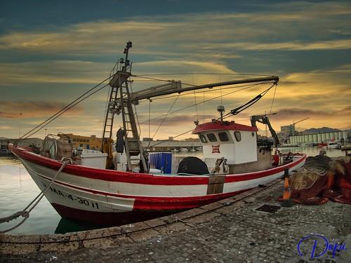 Puerto de Pescadería de Málaga