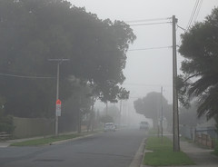Then all of a sudden one day it was foggy ....