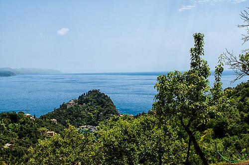 Passeggiata Portofino-San Fruttuoso 2019 (DSC2909)
