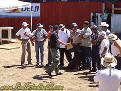 Expo PZ 2006