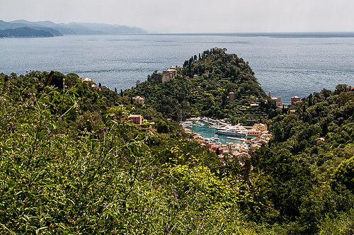 Passeggiata Portofino-San Fruttuoso 2019 (DSC2900)