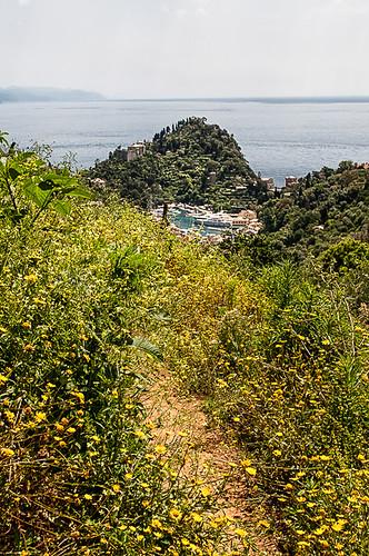 Passeggiata Portofino-San Fruttuoso 2019 (DSC2899)
