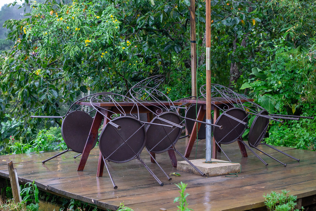 Garden Chairs leaning on Wooden Tables at an Outdoor Space of a Cafe