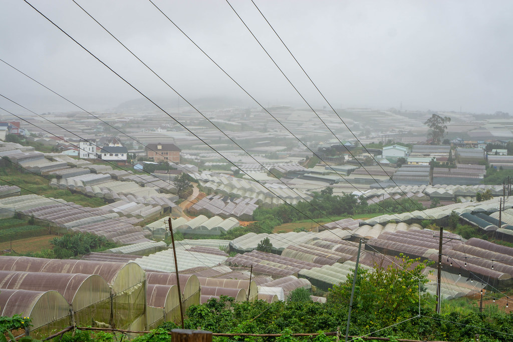 View of many Grow Houses in foggy Weather in Da Lat, Vietnam