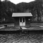 Ha Long Oyster Hut (Retina IIIC / Tri-X)