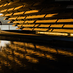 Golden Tunnel by Rachel Dunsdon