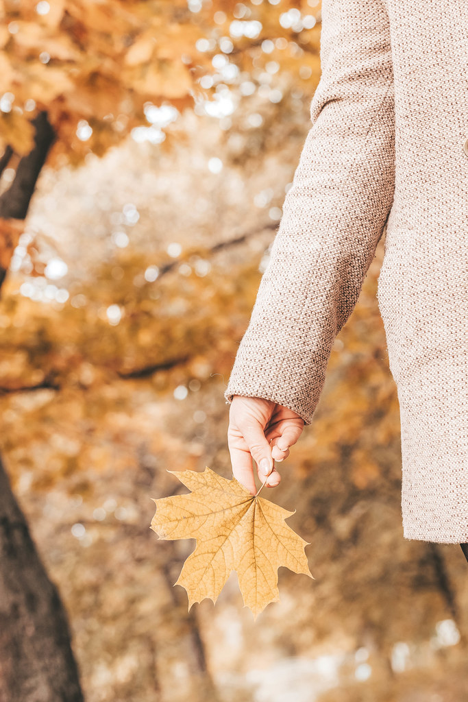 A girl holding an autumn maple leaf in her hand