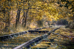 Autumnal rails - Photo of Vérac