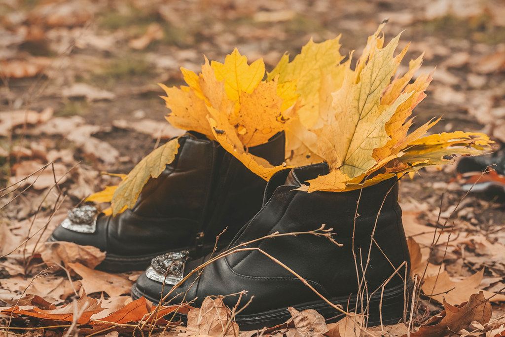 Women's shoes with autumn yellow leaves