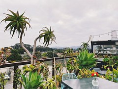 When you stay at this place you get an excellent free breakfast, on the roof with a view of Monterey Bay to boot, now that's a perk