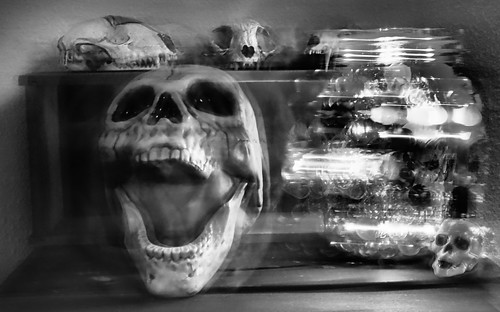 Skulls n Lights