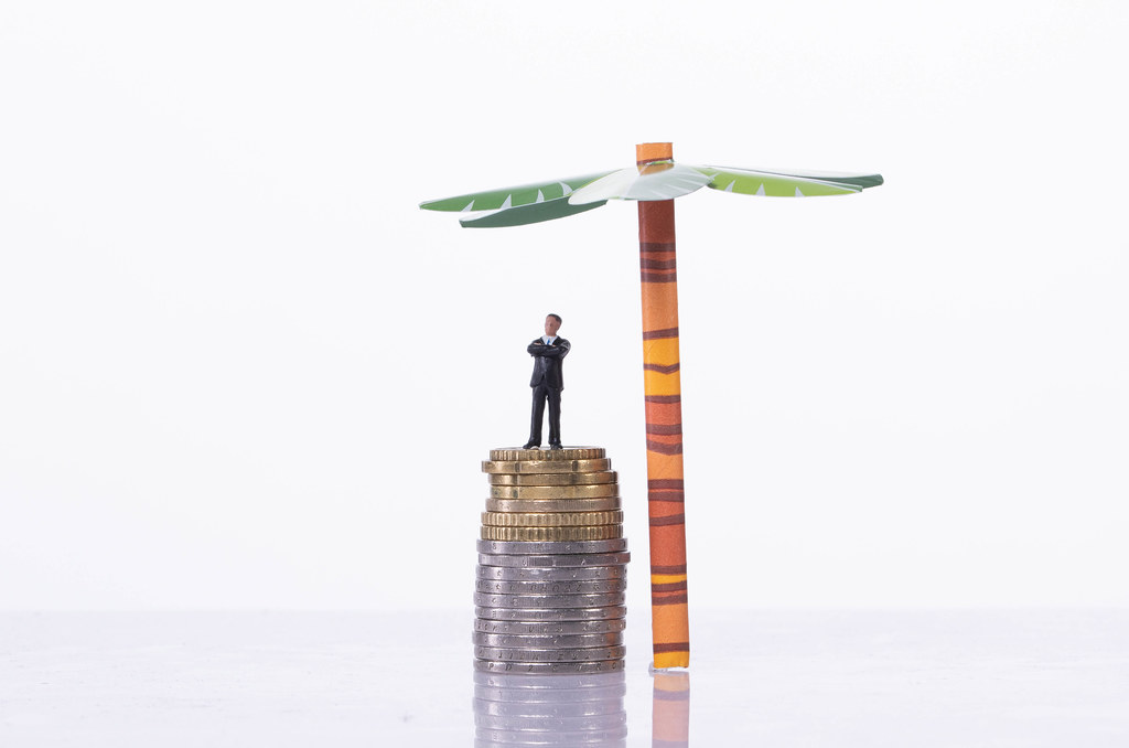 Businessman standing on a stack of coin with palm tree