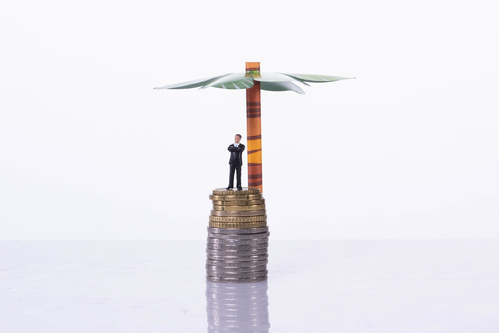 Businessman standing on a stack of coin with palm tree on white background