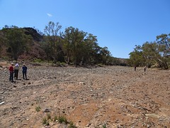 Parachilna Gorge in the Flinders Ranges. When the river is not in flood.