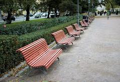 Empty benches...