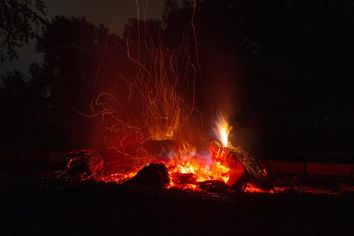 The wild fire on the last night