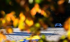 Road Atlanta - 2020 Petit Le Mans - Race Day