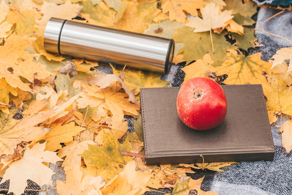 Apple, book and thermos on autumn background of yellow maple leaves