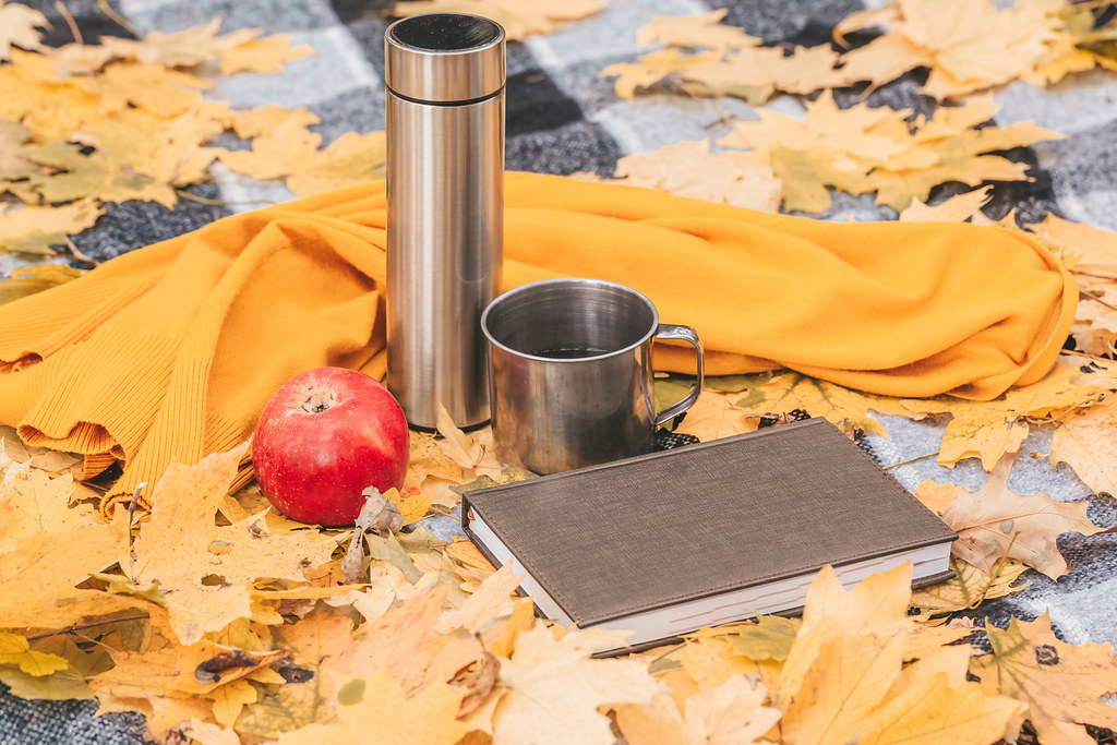 Book, apple, thermos and a mug of tea on a blanket with autumn leaves