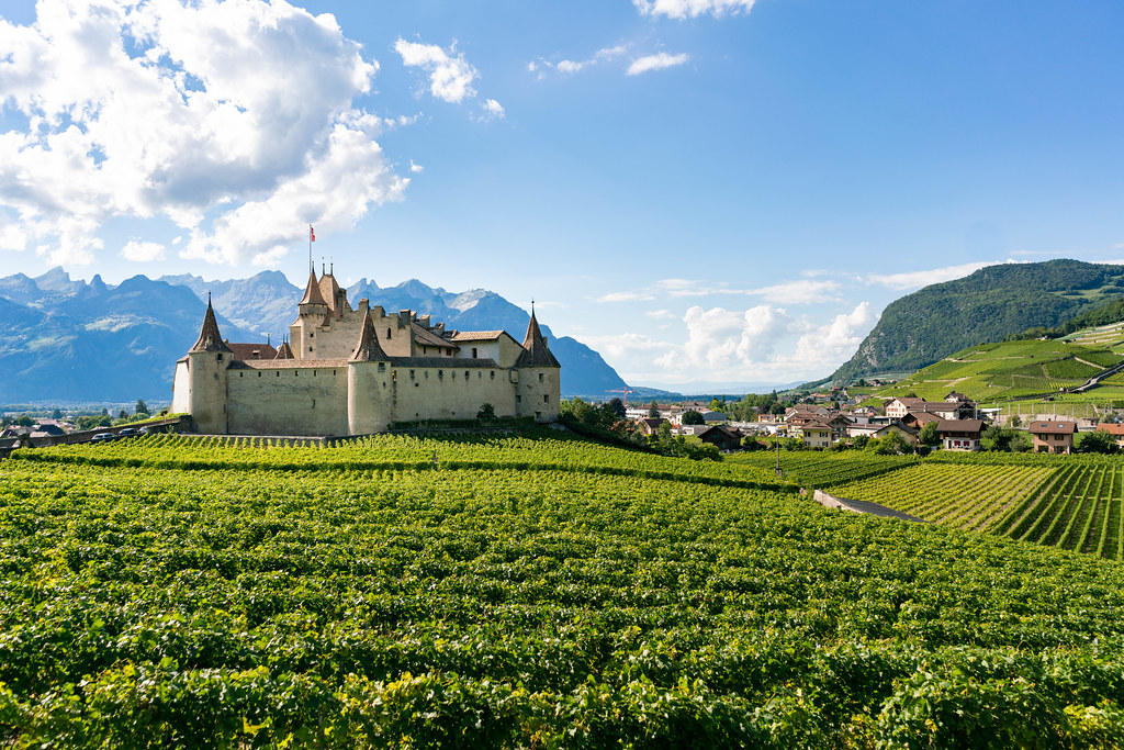 Beautiful medieval Swiss castle surrounded by green grapes