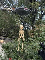Halloween Horror 2020