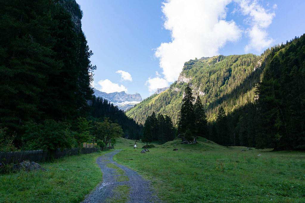 Gravel road leading into Swiss wilderness