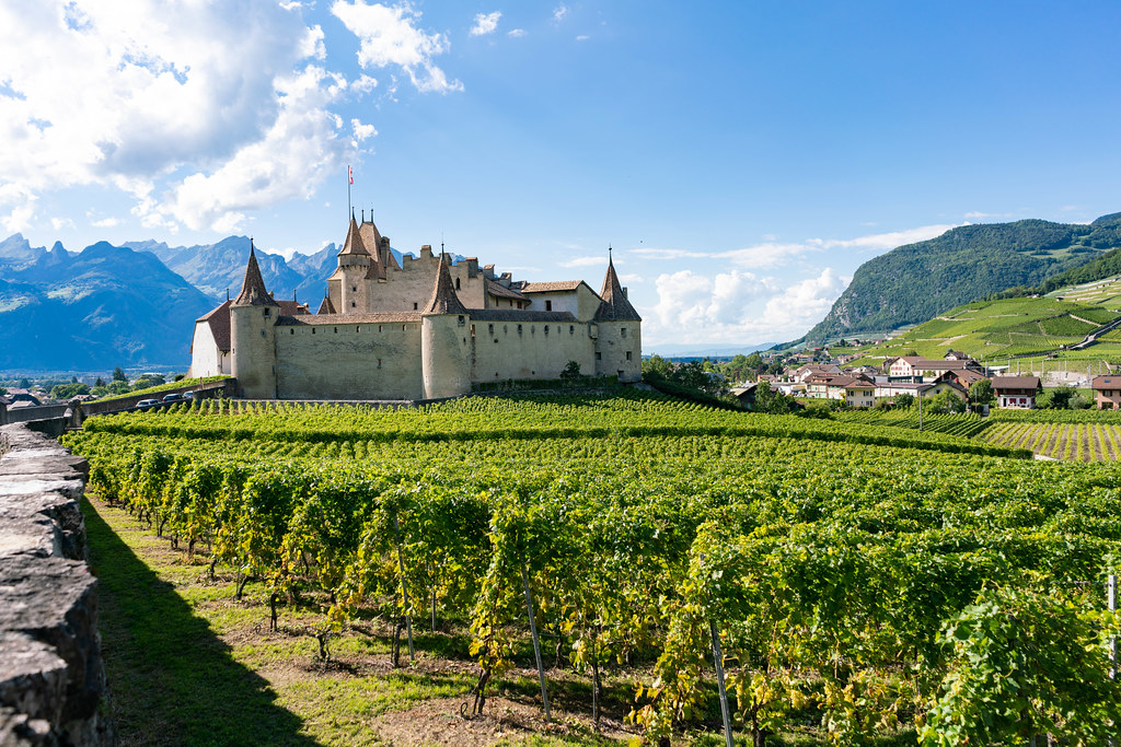 Aigle Castle in Swiss country with its own vineyards all around