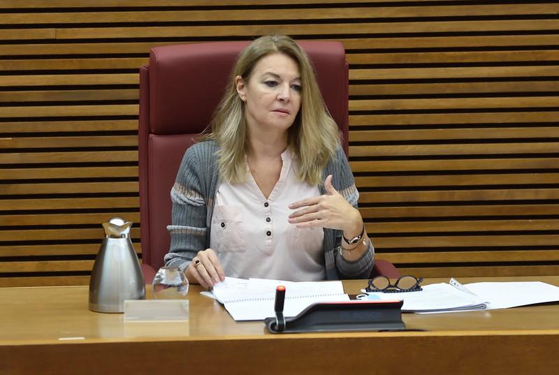 Comissió de Sanitat i Consum