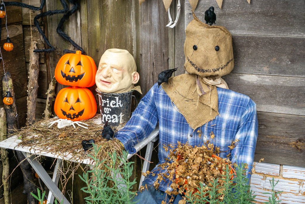 Halloween Decorations with Pumpkins, Plants and Ravens in front of a Wooden House