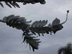 Leaves on Dragon Tail