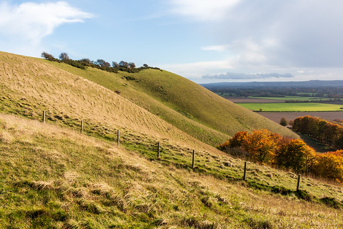 Golden Ball Hill