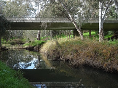 Busway Crossing the River
