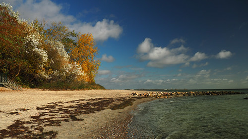 today's autumn colors on the beach