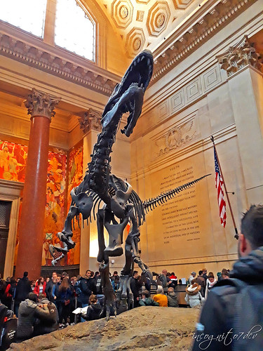 Inside the American Museum of Natural History Entrance Hall AMNH 200 Central Park West Manhattan UWS Upper West Side New York City NY P00695 20191029_144126
