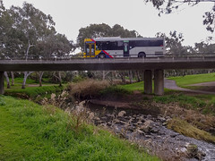 Bus on Busway