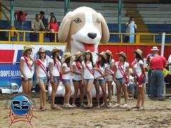 Expo PZ 2010
