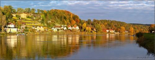 Herbst an der Elbe in Pirna