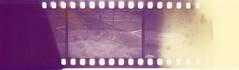 Diazo Microfilm