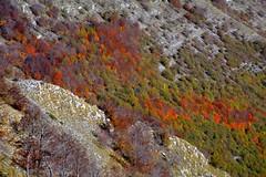 Autunno sui Monti Simbruini