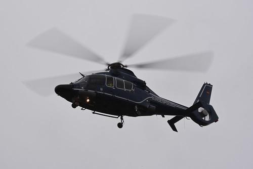 Germany - Federal Police Eurocopter EC-155 B Dauphin D-HLTJ