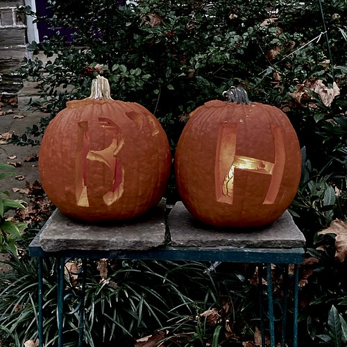 biden harris pumpkins