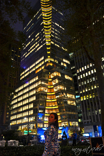 Me & 7 Bryant Park at Night Avenue of the Americas 6th Ave Midtown Manhattan New York City NY P00697 DSC_3594