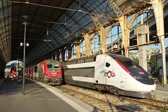 Alstom BB 36000 + TGV Duplex  -  Gare de Nice Ville