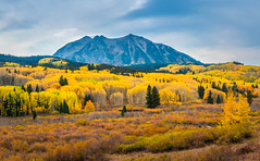 Colorado Mountains Autumn Colors Fall Foliage Fine Art Landscape Nature Photography Fuji GFX 100! Elliot McGucken 45EPIC Master Medium Format Photographer Fujifilm GFX100 & Fujinon GF Mount Lens!