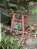 Photo:岩下神社? By cyberwonk